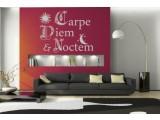 Carpe Diem & Noctem