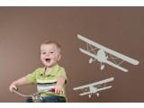 Dvokrilni avion