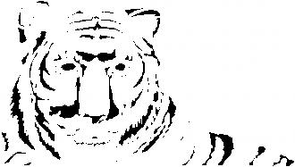 Tigar leži